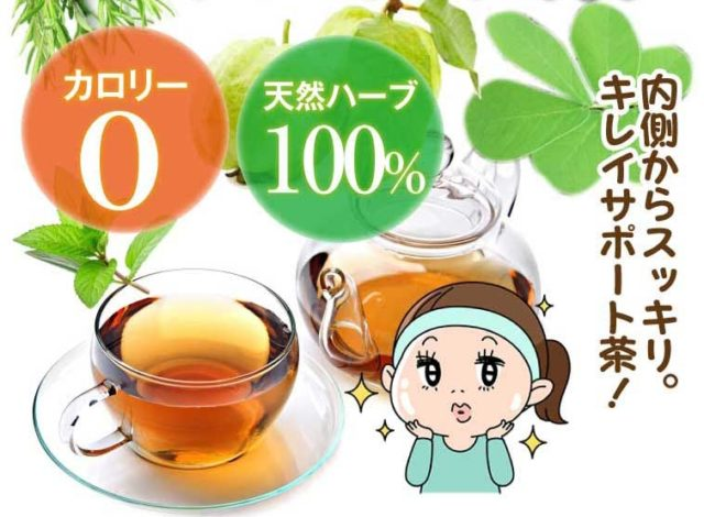 キャンデト茶 値段